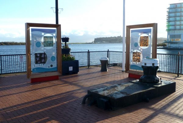 Cardiff Harbour Authority Heritage Site Design